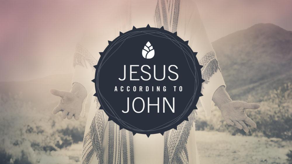 Jesus According to John